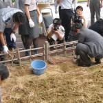 20150619鳥取空港ラッキョウ収穫祭 001