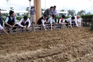 20140828鳥取空港にラッキョウ畑 027